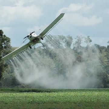 Grande parte dos produtores não tem qualificação para manusear agrotóxicos, afirma deputado