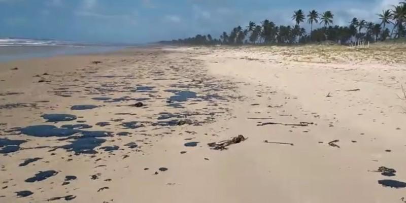 Último estado livre das manchas no Nordeste, a Bahia foi afetada nesta quinta (3), segundo o Projeto Tamar