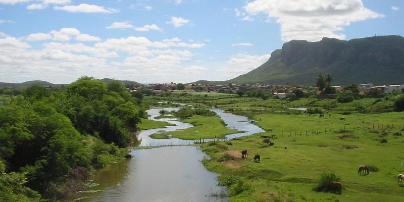 A Microrregião de Água e Esgoto do Sertão engloba a Região Administrativa Integrada de Desenvolvimento do polo Juazeiro e Petrolina, e é composta por 24 municípios