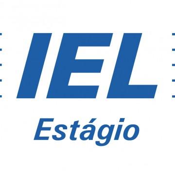 IEL-PE realiza seleção de estágio para estudantes de Design, Marketing eAdministração