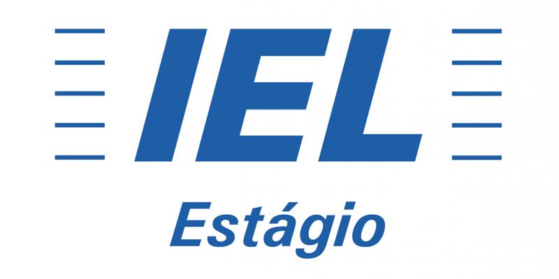 Para participar, é necessário encaminhar o currículo para o e-mail do IEL-PE