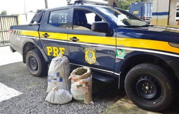 PRF prende quatro pessoas com 28 Kg de maconha em Caruaru