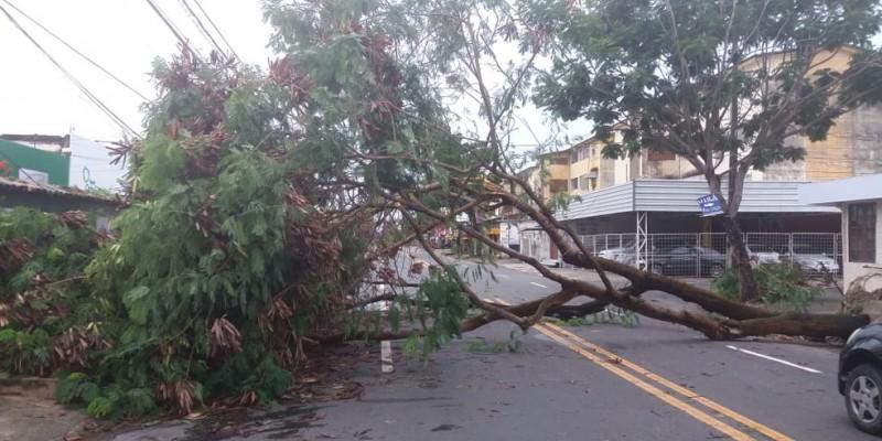 Na Zona Sul da capital pernambucana ventos de mais de 40 km foram registrados de acordo com a Apac