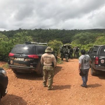 Polícia Federal erradica cerca de 57 mil pés de maconha no Sertão de PE