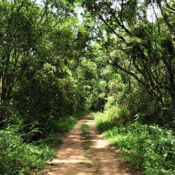 Suape oferece cursos de educação ambiental