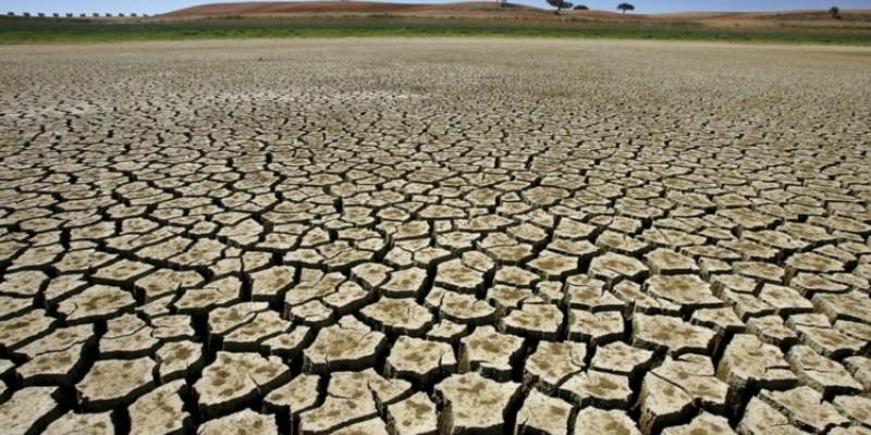 O aumento acima do normal nas temperaturas no último trimestre também contribuiu para o aumento do cenário de desertificação em algumas partes do estado.