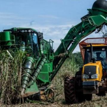 Acordo Mercosul e UE anima cadeia do açúcar e do vinho em Pernambuco