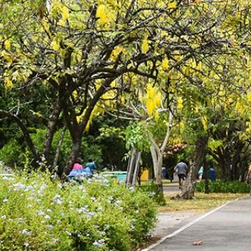 Recife libera praias e parques para atividades físicas
