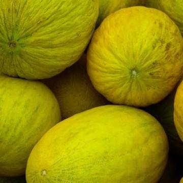 China autoriza compra de melão brasileiro e Nordeste é diretamente beneficiado