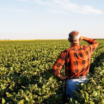 Produtores rurais poderão refinanciar dívidas com juros de 8% ao ano