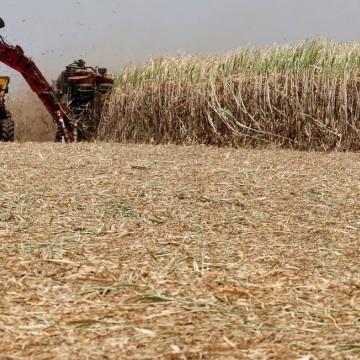 Nordeste quer redistribuição do etanol importado