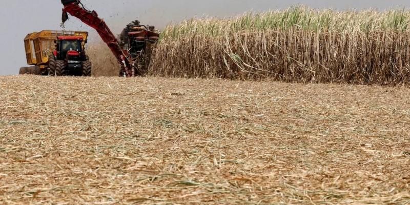 Proposta sugere que dos 750 milhões de litros que serão enviados para todo o Brasil, 700 milhões sejam destinados para os estados do centro-sul