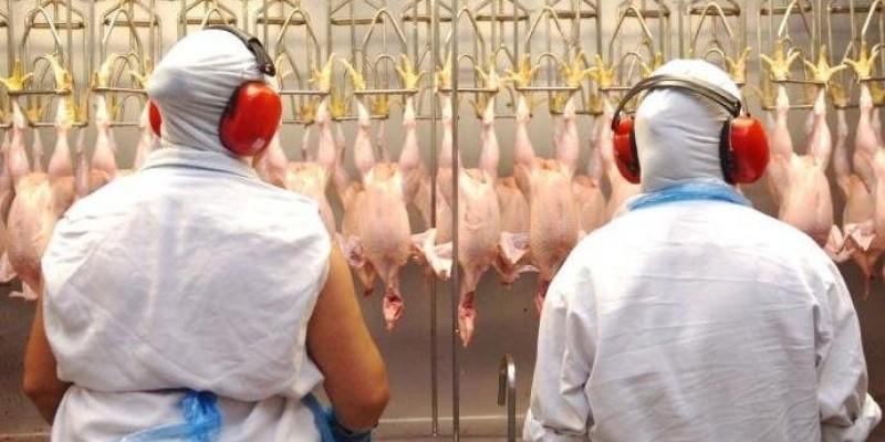 Governo brasileiro se diz surpreendido e ameaça levar caso à OMC