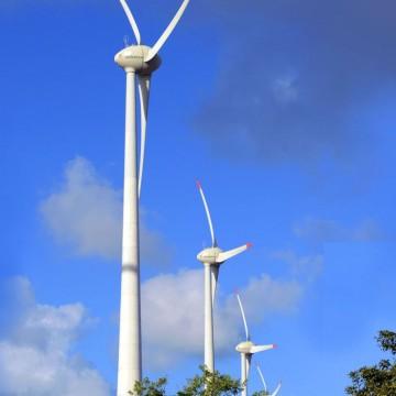 MEC quer ampliar oferta de cursos na área de energia renovável