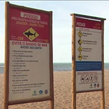 Pernambuco contabiliza 66 incidentes com tubarão