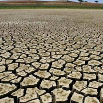 Mais da metade do território de Pernambuco registra seca em agosto
