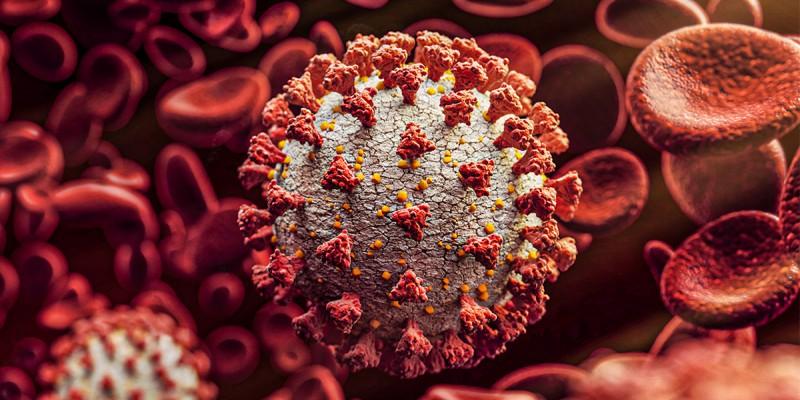 Estado totaliza 163.642 infectados pelo novo coronavírus