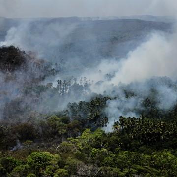 Estratégias de proteção ambiental, agronegócio verde e conselho da Amazônia