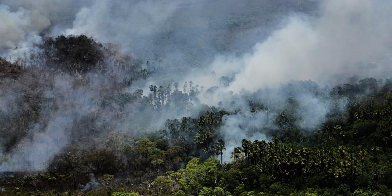 A necessidade do aprimoramento de políticas públicas ambientais