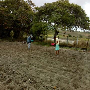 Chuvas na região animam agricultores para início de plantio