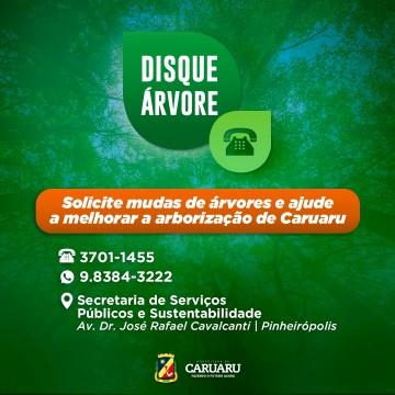 Disque Árvore é disponibilizado pela prefeitura de Caruaru e moradores podem solicitar plantio de mudas