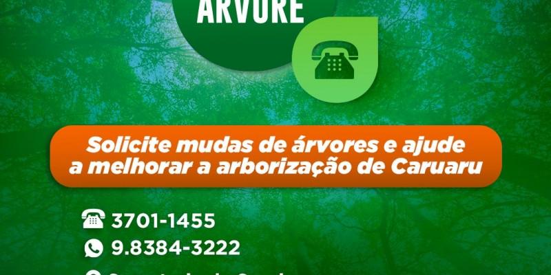 Serviço gratuito, oferecido pela Prefeitura de Caruaru, para a realização do plantio de mudas de árvores em vias públicas e calçadas, mediante solicitação dos moradores