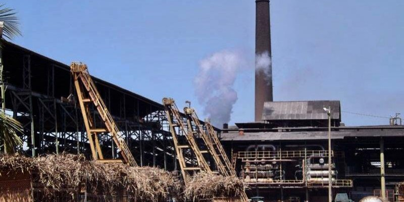 A unidade calcula produzir 60 milhões de litros de etanol e esmagar 780 mil toneladas de cana