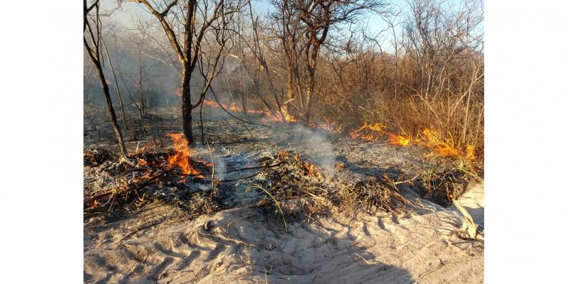 O incêndio devastou mais 700 hectares de caatinga no Sertão de Pernambuco