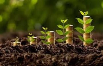 Como o Brasil ganha ao apostar em iniciativas verdes