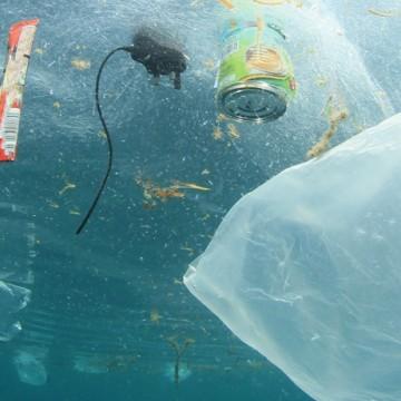 CBN Sustentabilidade: Julho sem plástico
