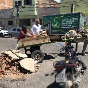 Vereador apresenta projeto de Lei que proíbe o trânsito de veículos de tração animal em Caruaru