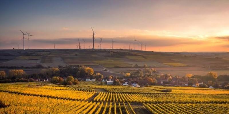 Programa busca o incentivo à produção de combustíveis limpos e descarbonização