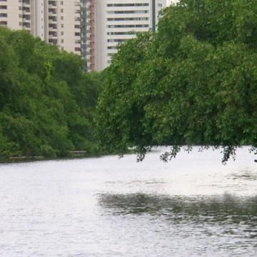 Panorama CBN: Conservação do Rio Capibaribe
