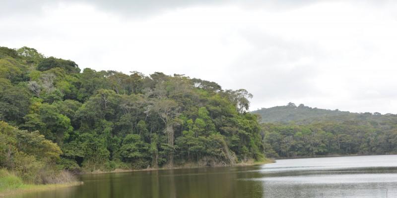 O parque foi selecionado para o Programa Internacional de Aceleração para Unidades de Conservação Ambiental