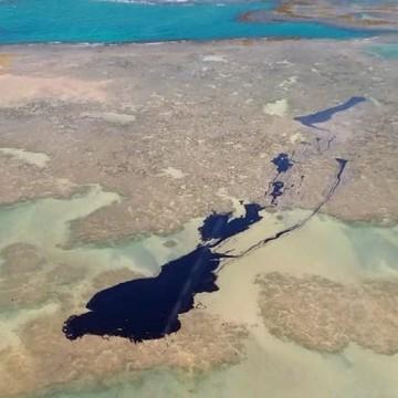 Pernambuco recolhe 1.518 toneladas de óleo nas praias