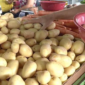 Batata inglesa está mais cara no Grande Recife