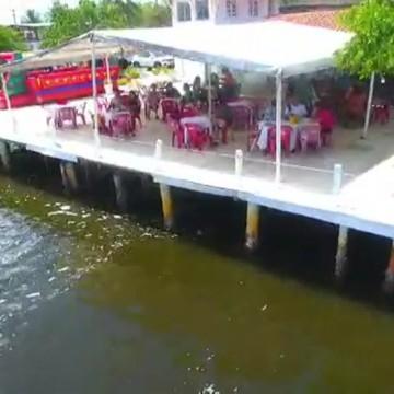 Menino de 5 anos é atacado por pitbull dentro de um restaurante em Jaboatão dos Guararapes