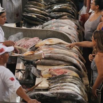 Pescado está totalmente liberado para o consumo, afirma secretário de desenvolvimento agrário de Pernambuco
