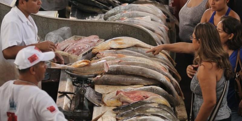 Análises da segurança alimentar dos frutos do mar do Estado apresentam resultados positivos após desastre ambiental que deixou as praias pernambucanas repletas de óleo