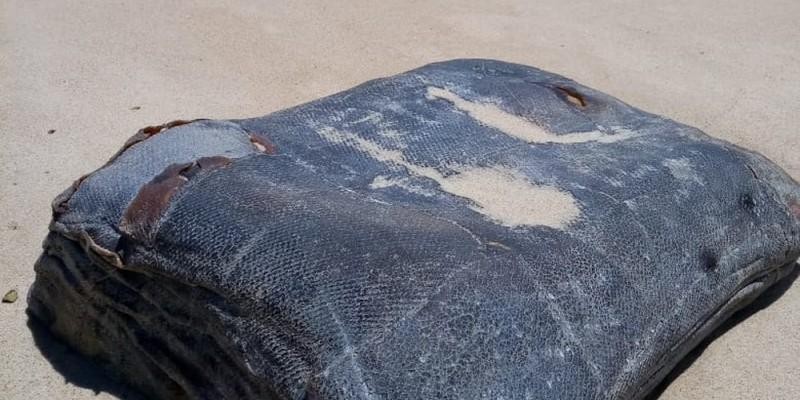 De acordo com os pesquisadores cearenses, a relação entre as 200 caixas encontradas e o óleo ao longo da costa está descartada.