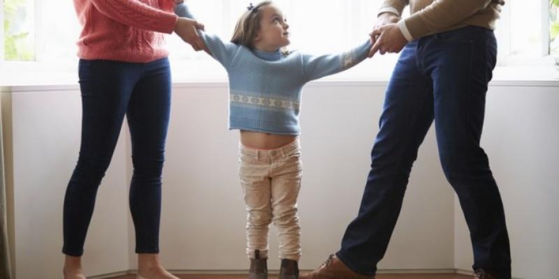 Especialista em direito da família sugere que, casa não haja um consenso, a parte prejudicada procure um advogado ou a Defensoria Pública