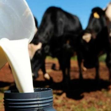 Produtores de leite poderão ter desconto na conta de energia