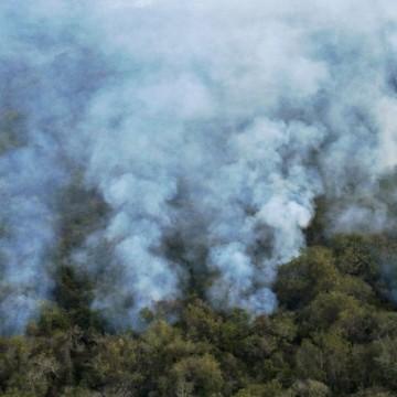 CBN Sustentabilidade: Fogo no Pantanal