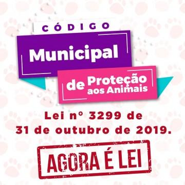 Código Municipal de Proteção Animal é sancionado em Belo Jardim, no Agreste