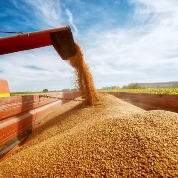 Produção de grãos crescerá cerca de 27% nos próximos dez anos