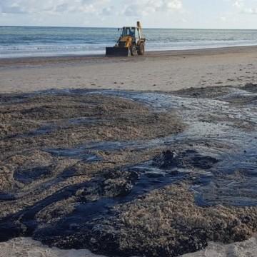 Derramamento de óleo causa enormes prejuízos ao solo, afirma especialista