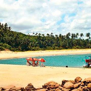 Panorama CBN: Turismo, Educação e Saúde