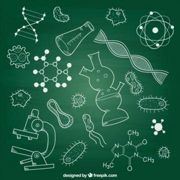 Revisando CBN: Biologia 19/10/2020