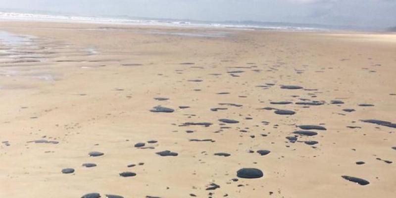 De acordo com o IBAMA, mais de quatro mil toneladas da substância foram recolhidas em 321 praias de 125 municípios dos noves estados do Nordeste