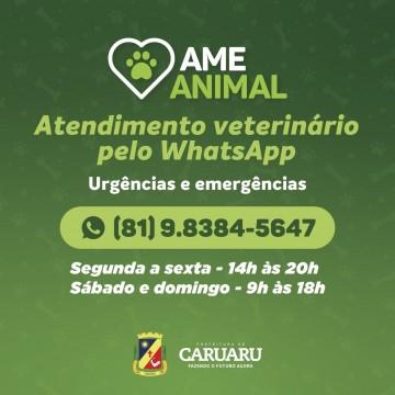 AME Animal disponibiliza número de WhatsApp para urgências e emergências